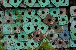 緑に塗られた鉄筋の写真素材 [FYI01263208]