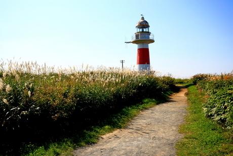 北海道積丹半島の灯台の風景の写真素材 [FYI01263280]