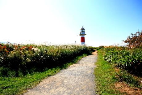 北海道積丹半島の灯台の風景の写真素材 [FYI01263281]