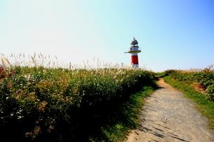 北海道積丹半島の灯台の風景の写真素材 [FYI01263282]