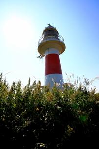 北海道積丹半島の灯台の風景の写真素材 [FYI01263283]