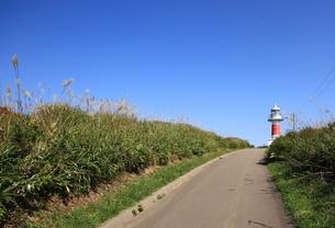 北海道積丹半島の灯台の風景の写真素材 [FYI01263287]