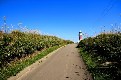 北海道積丹半島の灯台の風景の写真素材 [FYI01263308]