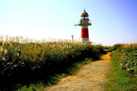 北海道積丹半島の灯台の風景の写真素材 [FYI01263309]