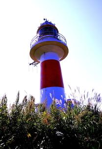 北海道積丹半島の灯台の風景の写真素材 [FYI01263310]
