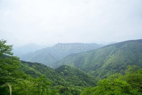 新緑の山並みの写真素材 [FYI01263322]