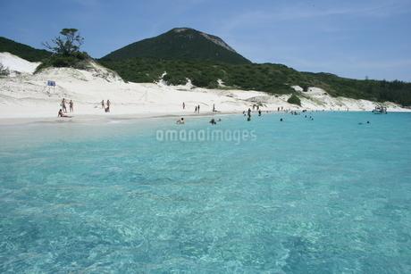 夏の海の写真素材 [FYI01263670]