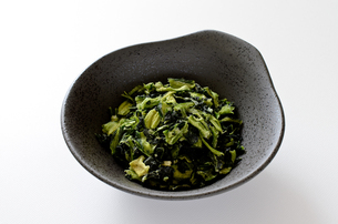 乾燥小松菜の写真素材 [FYI01263747]