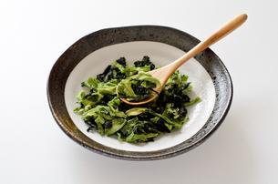 乾燥小松菜の写真素材 [FYI01263750]