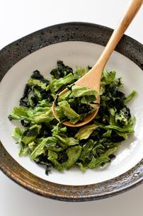 乾燥小松菜の写真素材 [FYI01263751]