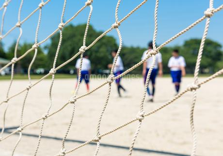 サッカーの写真素材 [FYI01263843]