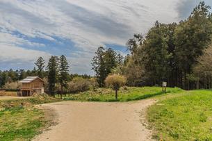 春の箕輪城の二の丸の風景の写真素材 [FYI01263887]