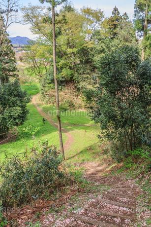 春の箕輪城の風景の写真素材 [FYI01263900]
