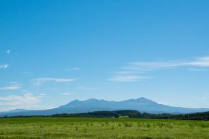 緑の牧草畑と夏の山並み 大雪山の写真素材 [FYI01263907]