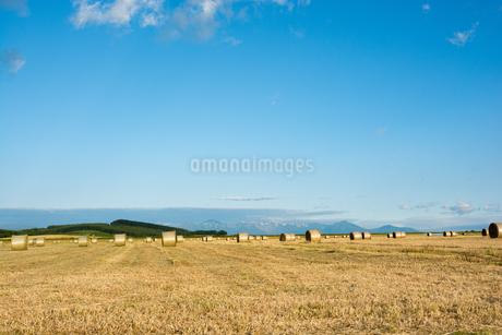 収穫が終わった麦畑とムギロール 北海道の写真素材 [FYI01263930]