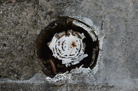 腐った木の筒の写真素材 [FYI01263959]
