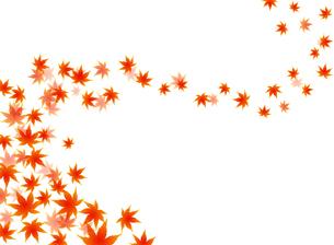 流れる紅葉の背景のイラスト素材 [FYI01264022]
