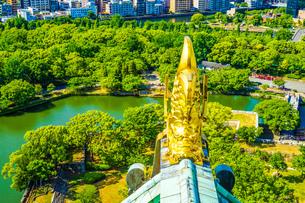 大阪城の天守閣からの風景の写真素材 [FYI01264108]