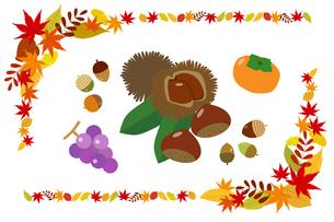 秋の収穫物と紅葉フレームのイラスト素材 [FYI01264441]