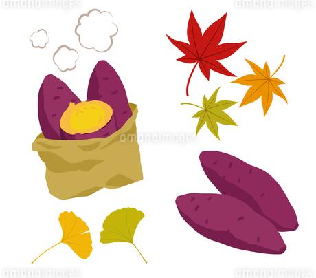 焼き芋と紅葉のイラスト素材 [FYI01264449]