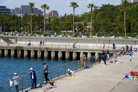 休日に釣りを楽しむ人々の写真素材 [FYI01264645]