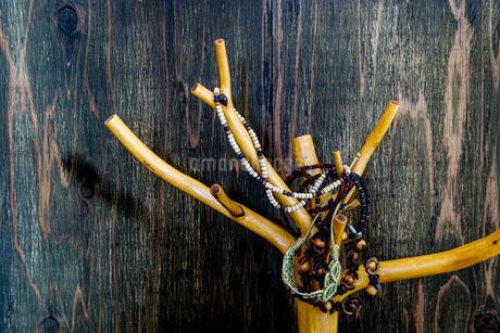 木の枝のオブジェに吊るされたネックレスの写真素材 [FYI01264764]