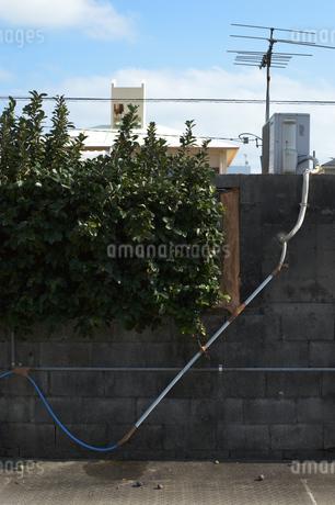 壁に這うホースの写真素材 [FYI01264939]