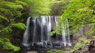滝の写真素材 [FYI01265058]