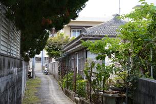 沖縄の古民家のある路地裏の写真素材 [FYI01265074]