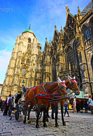 オーストリア・ウィーンの馬車の写真素材 [FYI01265085]