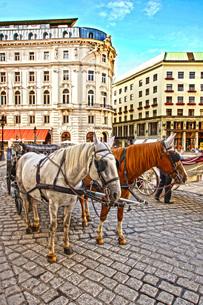 オーストリア・ウィーンの馬車の写真素材 [FYI01265086]