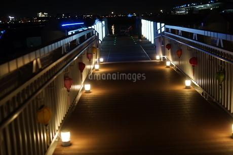光に照らされるさん橋の写真素材 [FYI01265102]