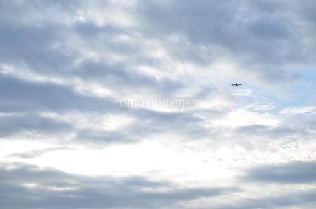 Sky Airplane 空 飛行機の写真素材 [FYI01265466]