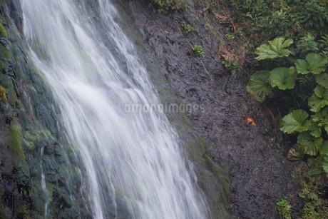 岩肌を流れる小さな滝の写真素材 [FYI01265596]