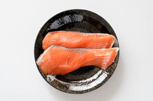銀鮭 切身の写真素材 [FYI01265683]
