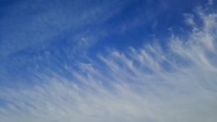 青い空に流れる巻雲の写真素材 [FYI01265835]