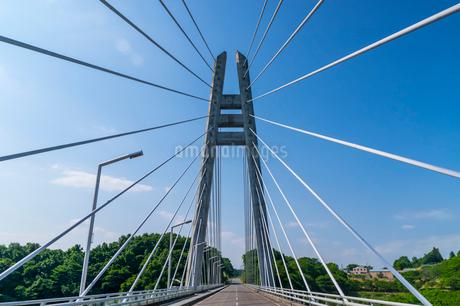 ダムに架かる吊り橋の写真素材 [FYI01265925]