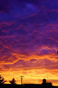 横浜の夕暮れの空の写真素材 [FYI01266074]