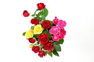 薔薇の花束の写真素材 [FYI01266194]