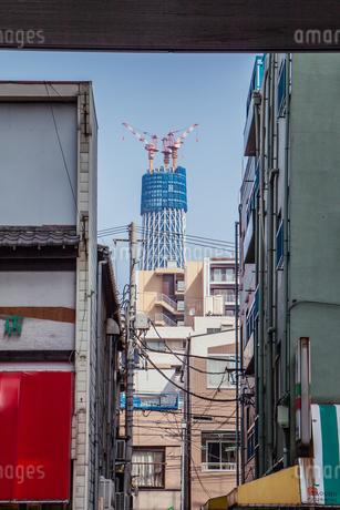 東京スカイツリー(建設中)の写真素材 [FYI01266215]