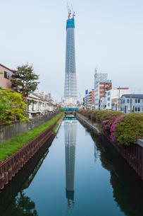 東京スカイツリー(建設中)の写真素材 [FYI01266217]