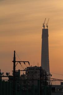 東京スカイツリー(建設中)の写真素材 [FYI01266226]