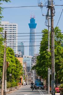 東京スカイツリー(建設中)の写真素材 [FYI01266230]