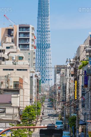 東京スカイツリー(建設中)の写真素材 [FYI01266231]