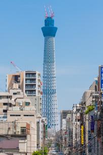 東京スカイツリー(建設中)の写真素材 [FYI01266232]
