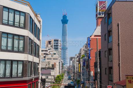 東京スカイツリー(建設中)の写真素材 [FYI01266233]