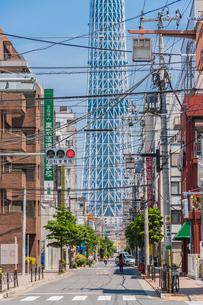 東京スカイツリー(建設中)の写真素材 [FYI01266235]