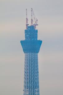 東京スカイツリー(建設中)の写真素材 [FYI01266236]