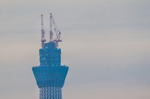 東京スカイツリー(建設中)の写真素材 [FYI01266237]