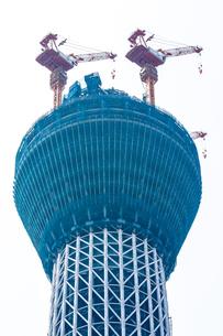 東京スカイツリー(建設中)の写真素材 [FYI01266238]